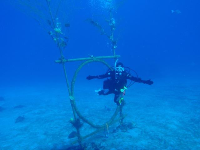 http://www.aquamarine-dive.net/blog/index.html/2014/01/11/P1113225.jpg