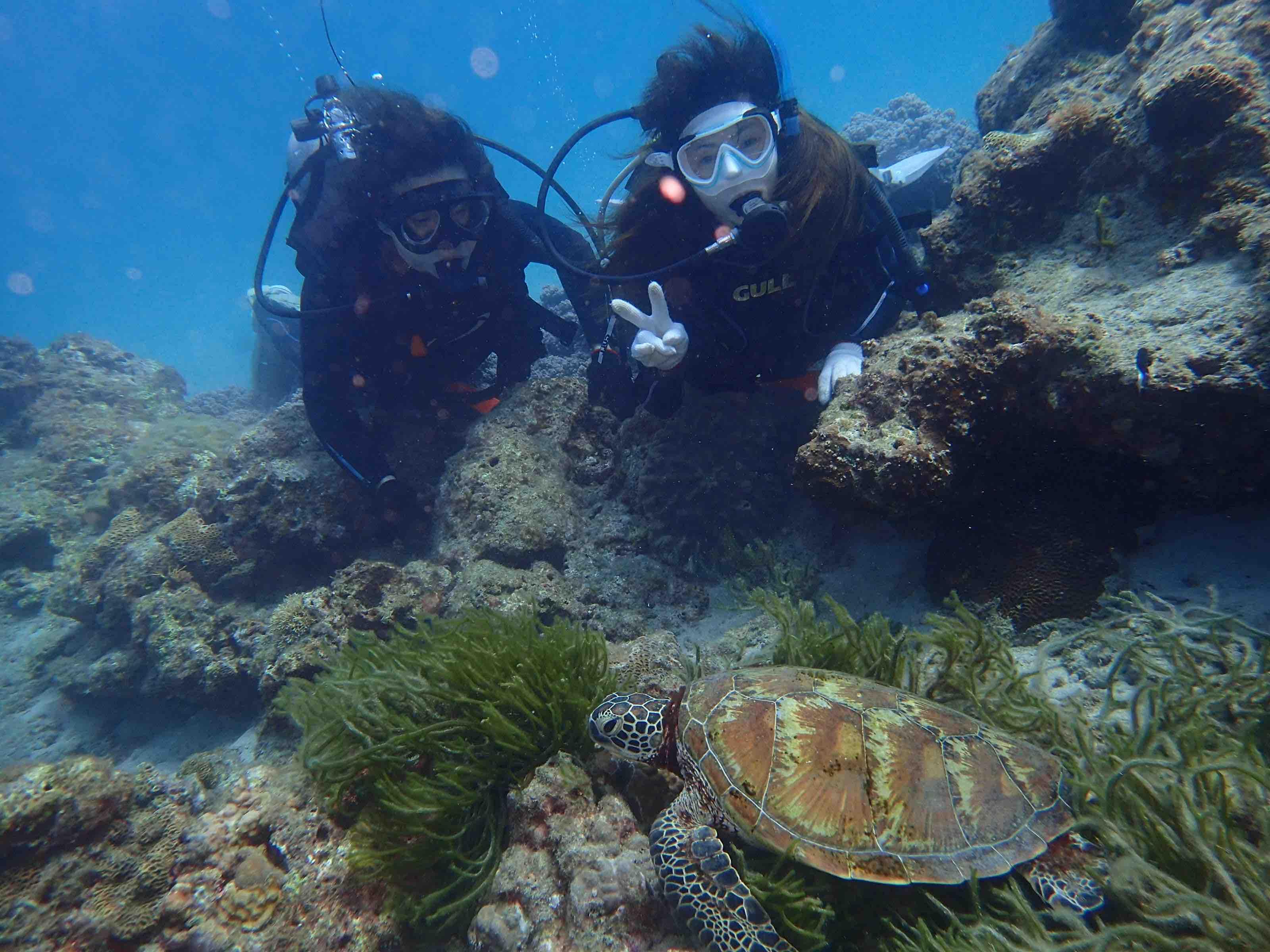 http://www.aquamarine-dive.net/blog/index.html/2017/07/28/P7211043.jpg